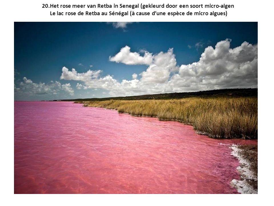 20.Het rose meer van Retba in Senegal (gekleurd door een soort micro-algen Le lac rose de Retba au Sénégal (à cause d'une espèce de micro algues)