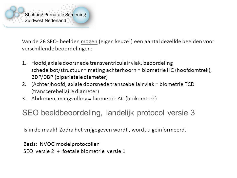 SEO beeldbeoordeling, landelijk protocol versie 3 Is in de maak.
