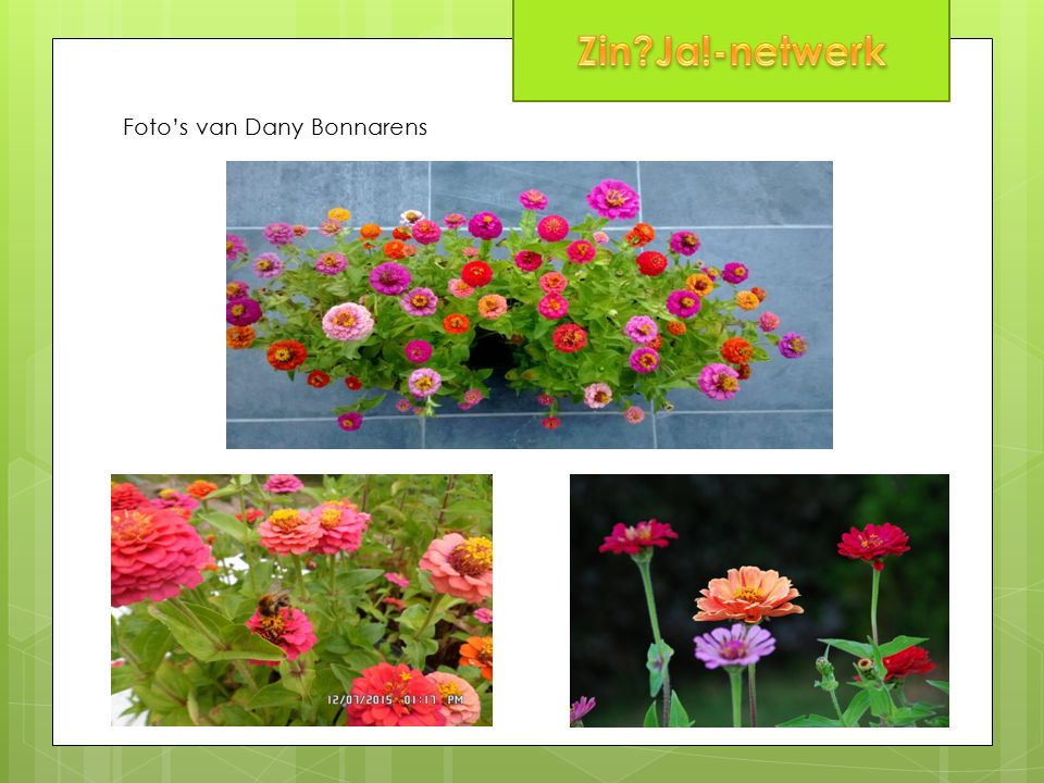 Foto's van Dany Bonnarens