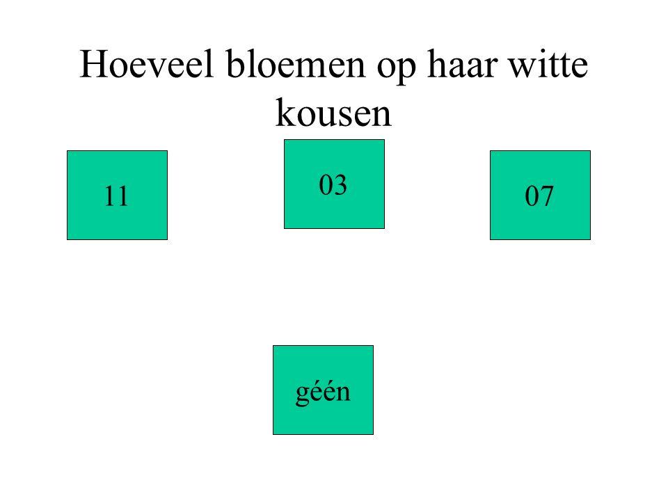 Hoeveel bloemen op haar witte kousen 11 géén 03 07