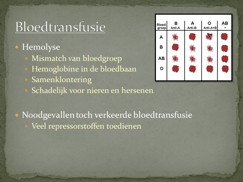 Hemolyse Mismatch van bloedgroep Hemoglobine in de bloedbaan Samenklontering Schadelijk voor nieren en hersenen Noodgevallen toch verkeerde bloedtrans