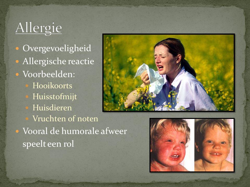 Overgevoeligheid Allergische reactie Voorbeelden: Hooikoorts Huisstofmijt Huisdieren Vruchten of noten Vooral de humorale afweer speelt een rol