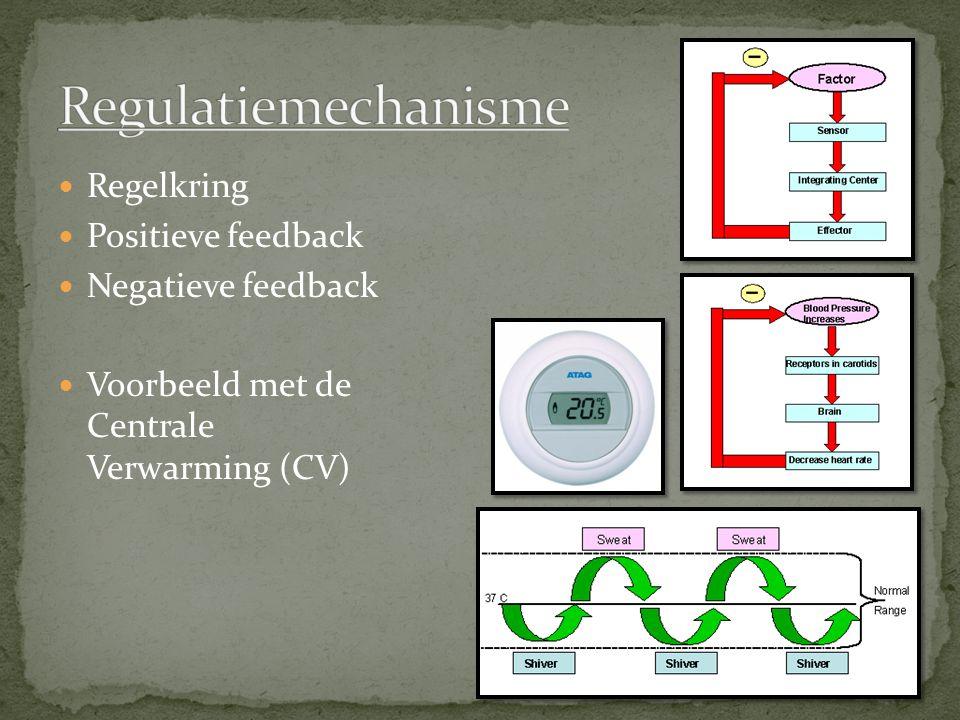 Regelkring Positieve feedback Negatieve feedback Voorbeeld met de Centrale Verwarming (CV)