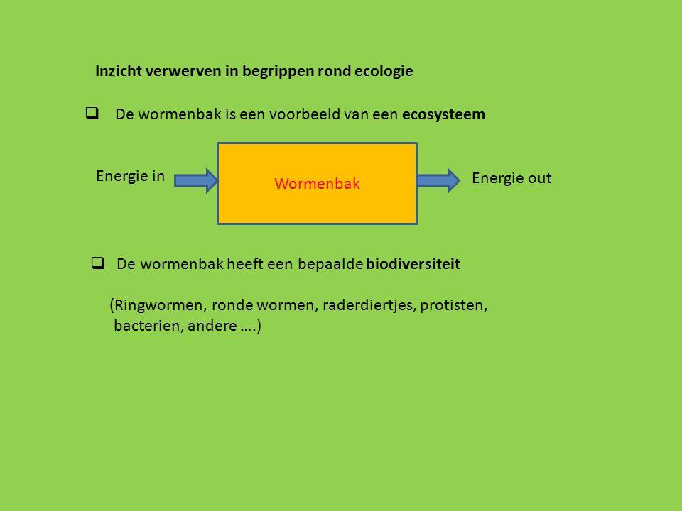 Inzicht verwerven in begrippen rond ecologie  De wormenbak is een voorbeeld van een ecosysteem Energie in Wormenbak Energie out  De wormenbak heeft een bepaalde biodiversiteit (Ringwormen, ronde wormen, raderdiertjes, protisten, bacterien, andere ….)