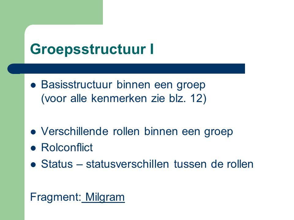 Groepsstructuur I Basisstructuur binnen een groep (voor alle kenmerken zie blz. 12) Verschillende rollen binnen een groep Rolconflict Status – statusv