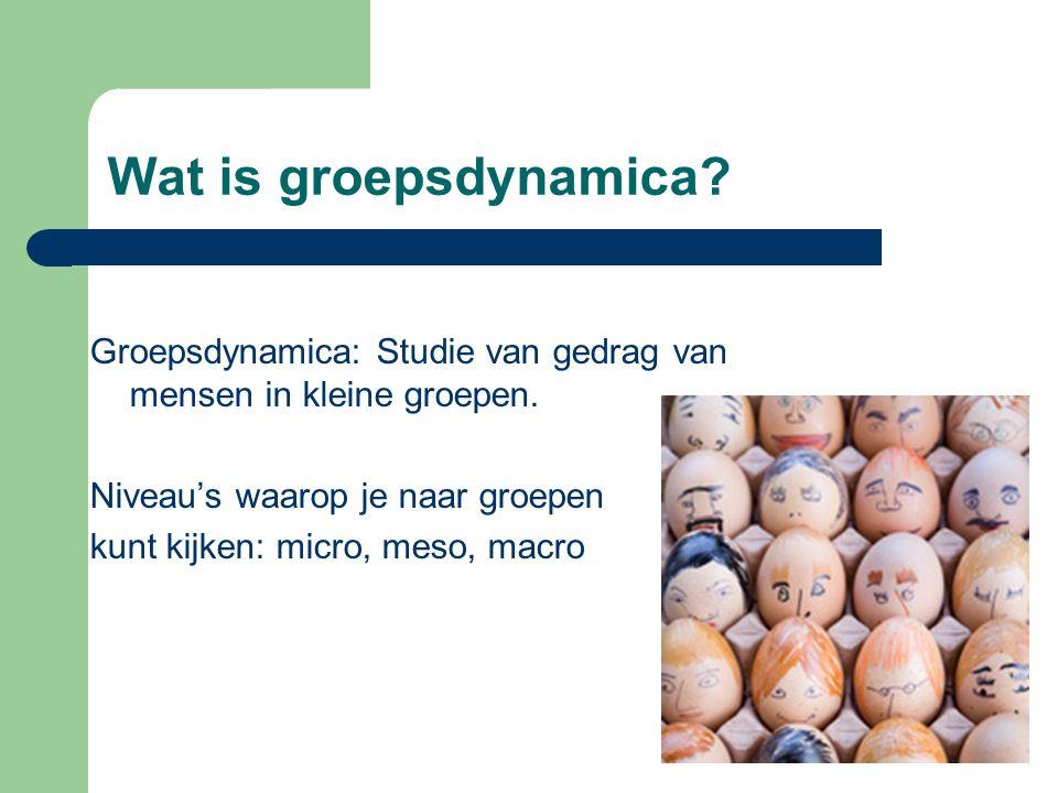 Wat is groepsdynamica? Groepsdynamica: Studie van gedrag van mensen in kleine groepen. Niveau's waarop je naar groepen kunt kijken: micro, meso, macro