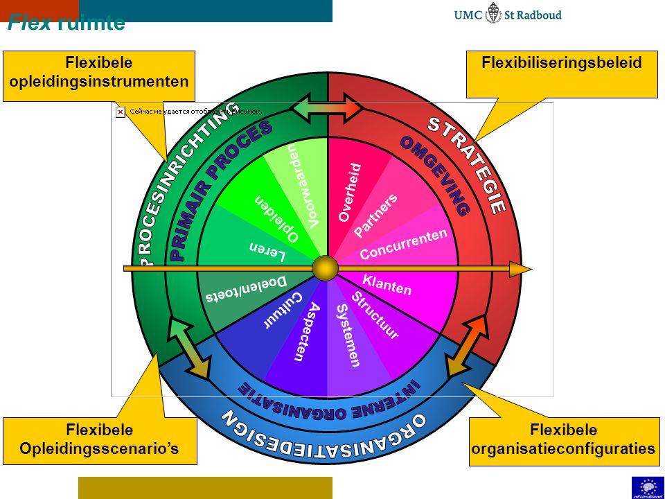 Flex route: een voorbeeld Projectmatig werken Op gevorderd niveau Projectplan maken Assessment, beroepsproduct Duur van een semester Action learning p