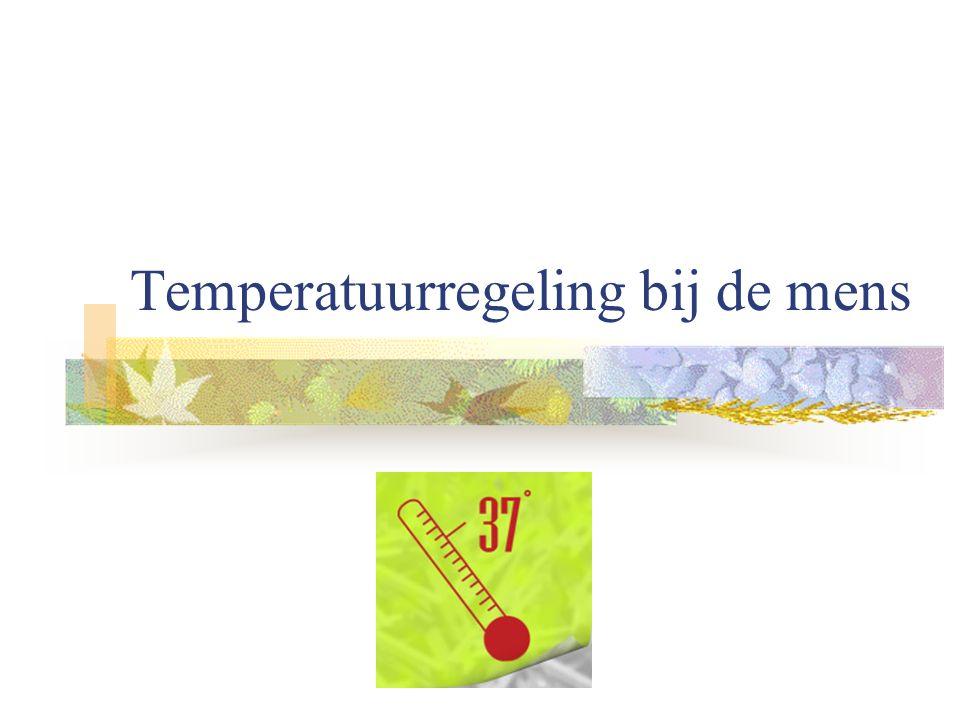 Temperatuurregeling bij de mens
