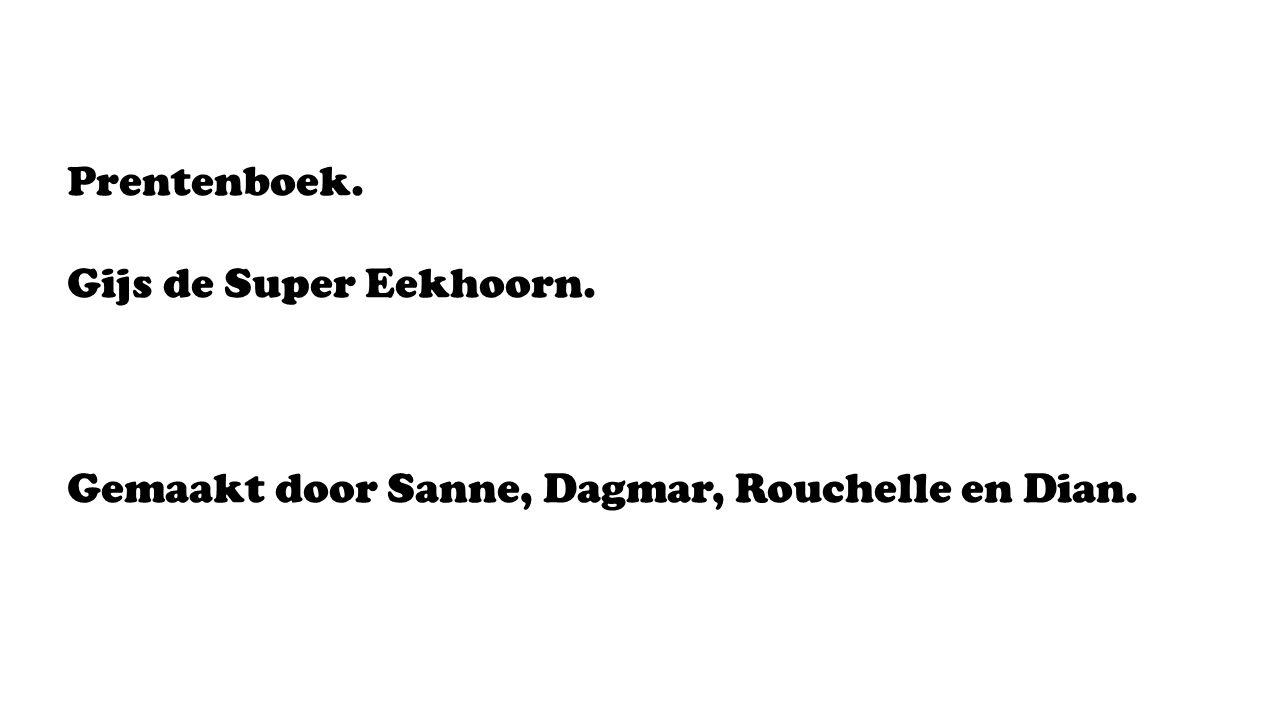 Prentenboek. Gijs de Super Eekhoorn. Gemaakt door Sanne, Dagmar, Rouchelle en Dian.