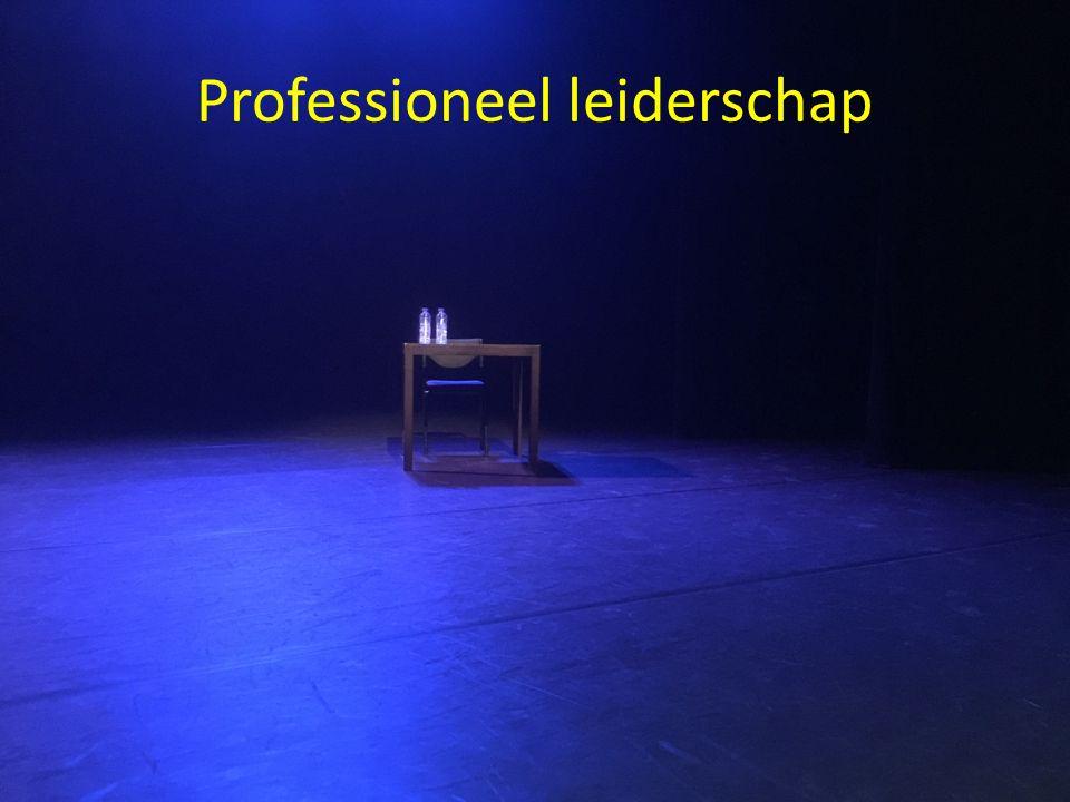 Professioneel leiderschap