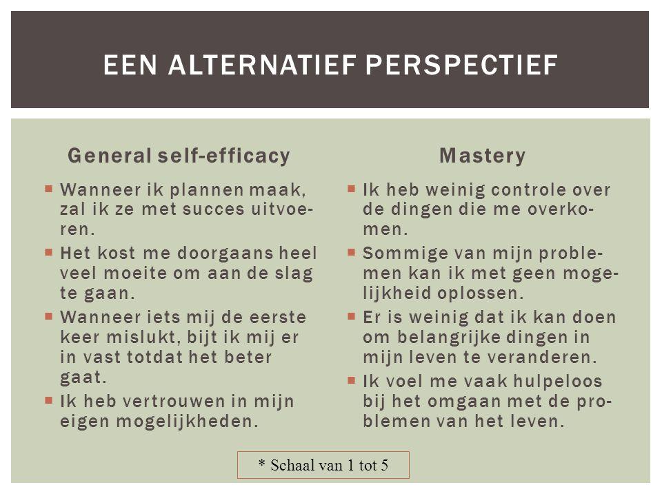 General self-efficacy  Wanneer ik plannen maak, zal ik ze met succes uitvoe- ren.  Het kost me doorgaans heel veel moeite om aan de slag te gaan. 