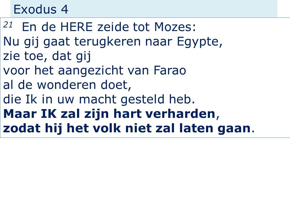 Exodus 4 21 En de HERE zeide tot Mozes: Nu gij gaat terugkeren naar Egypte, zie toe, dat gij voor het aangezicht van Farao al de wonderen doet, die Ik in uw macht gesteld heb.