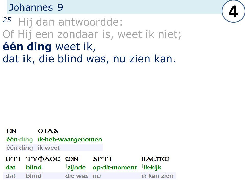 Johannes 9 25 Hij dan antwoordde: Of Hij een zondaar is, weet ik niet; één ding weet ik, dat ik, die blind was, nu zien kan.