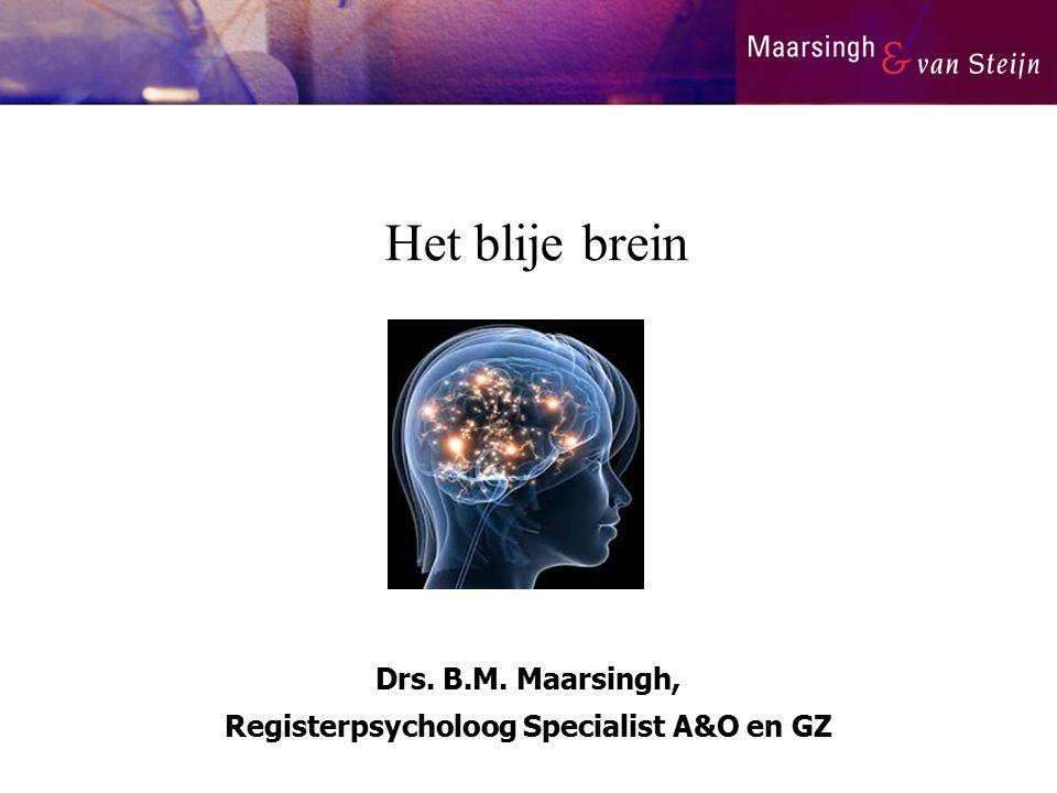 Drs. B.M. Maarsingh, Registerpsycholoog Specialist A&O en GZ Het blije brein
