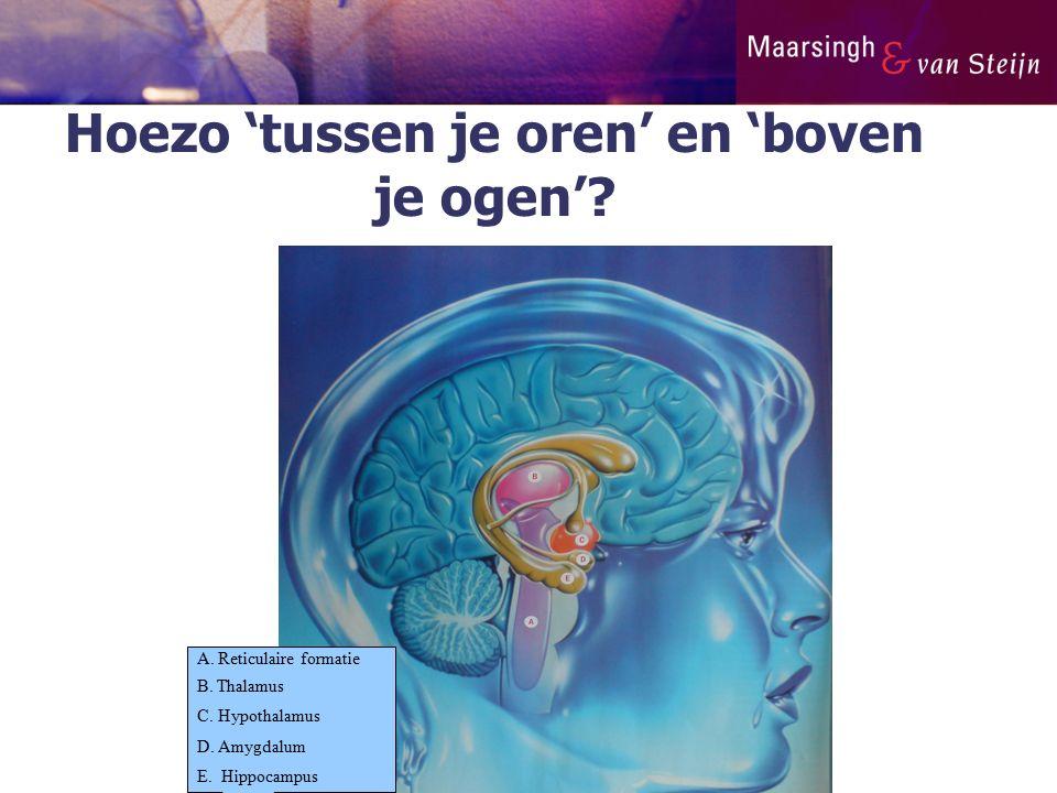 Hoezo 'tussen je oren' en 'boven je ogen'? A. Reticulaire formatie B. Thalamus C. Hypothalamus D. Amygdalum E. Hippocampus