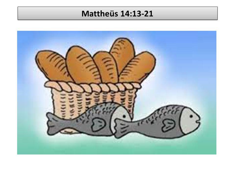 Mattheüs 14:13-21