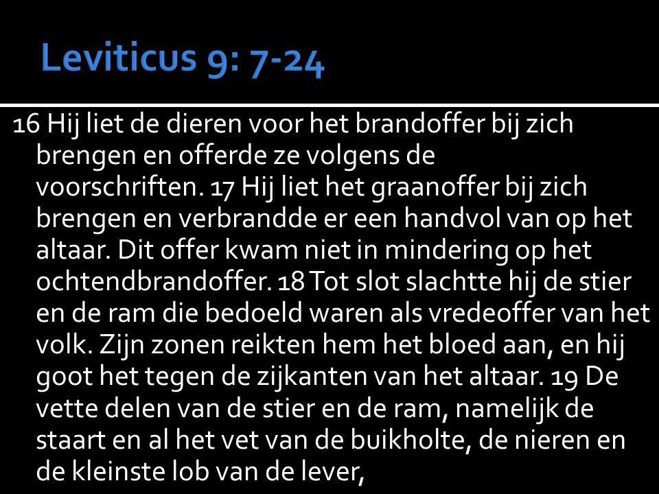 16 Hij liet de dieren voor het brandoffer bij zich brengen en offerde ze volgens de voorschriften. 17 Hij liet het graanoffer bij zich brengen en verb