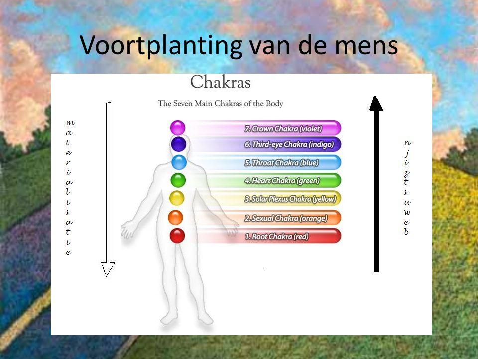 Voortplanting van de mens