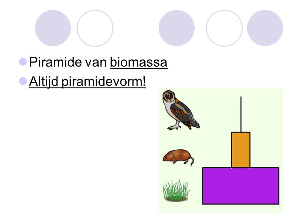 Piramide van biomassa Altijd piramidevorm!