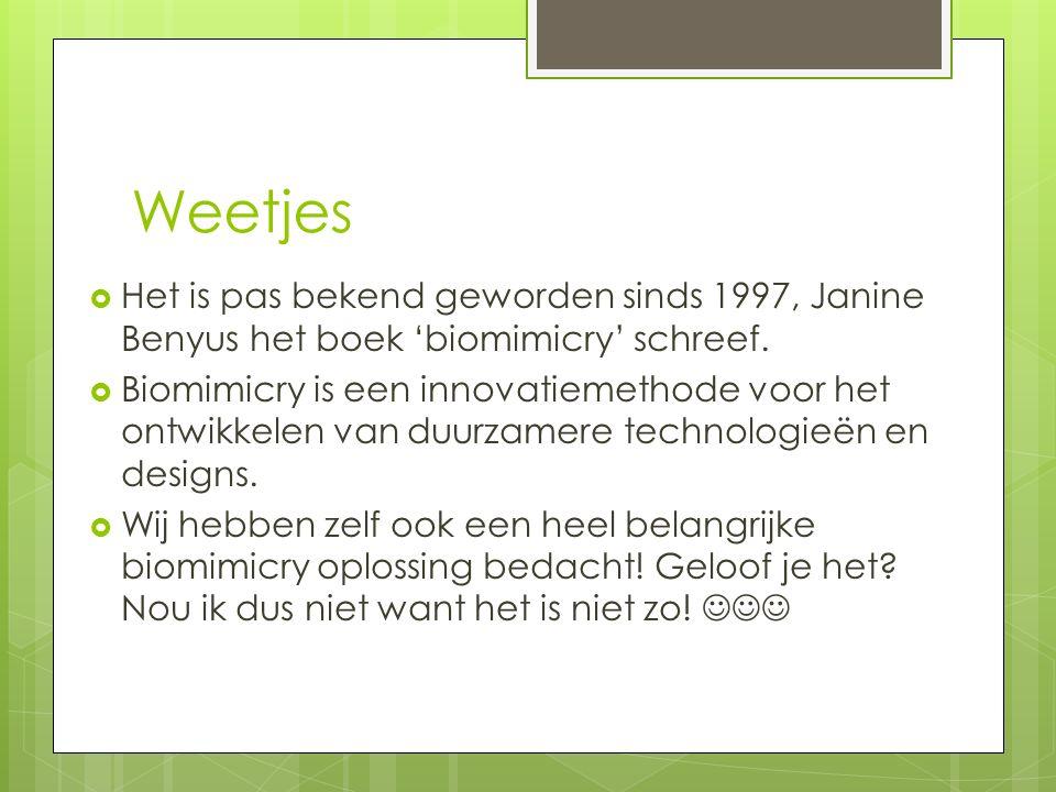 Weetjes  Het is pas bekend geworden sinds 1997, Janine Benyus het boek 'biomimicry' schreef.  Biomimicry is een innovatiemethode voor het ontwikkele
