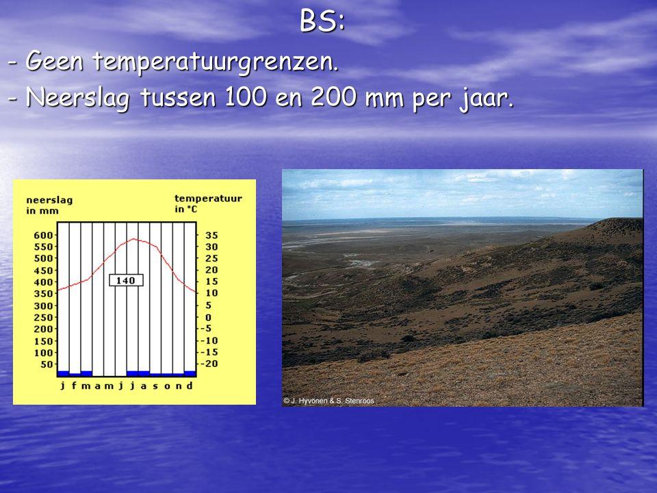 BS: - Geen temperatuurgrenzen. - Neerslag tussen 100 en 200 mm per jaar.