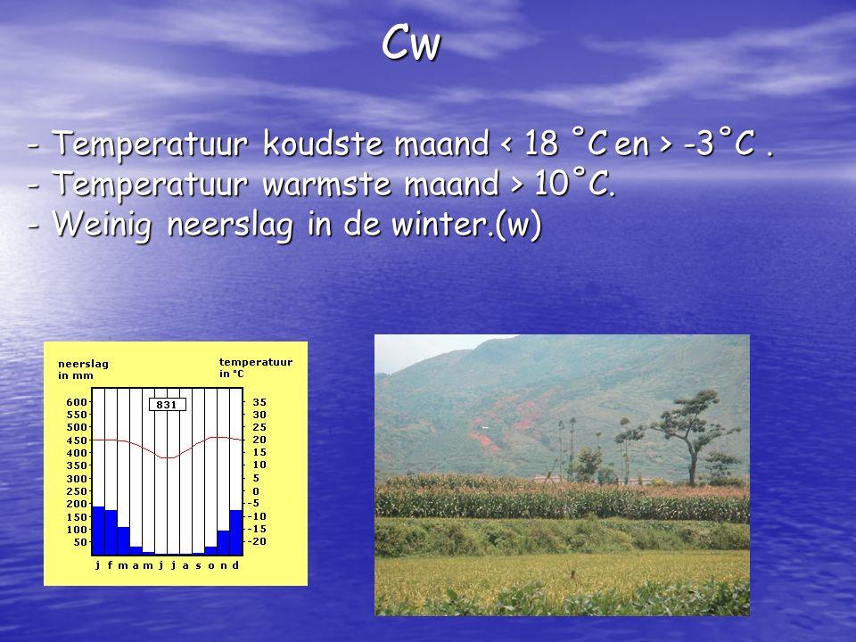 Cw - Temperatuur koudste maand < 18 ˚C en > -3˚C. - T- T- T- Temperatuur warmste maand > 10˚C. - W- W- W- Weinig neerslag in de winter.(w)
