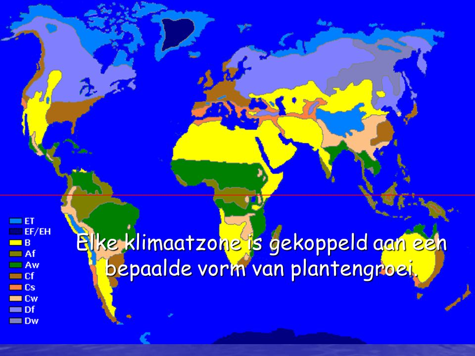 Elke klimaatzone is gekoppeld aan een bepaalde vorm van plantengroei.