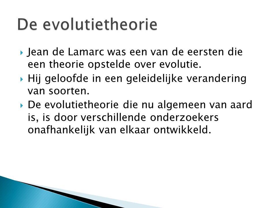  Evolutie: de ontwikkeling van het leven op aarde, waarbij soorten ontstaan, veranderen en/of verdwijnen.