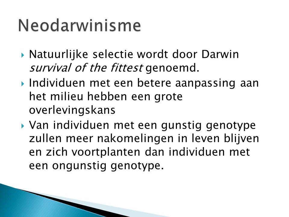  Deze theorie gaat uit van diversiteit (verscheidenheid) in genotypen, natuurlijke selectie en soortvorming door reproductieve isolatie.  Door mutat