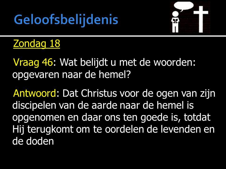 Zondag 18 Vraag 46: Wat belijdt u met de woorden: opgevaren naar de hemel? Antwoord: Dat Christus voor de ogen van zijn discipelen van de aarde naar d