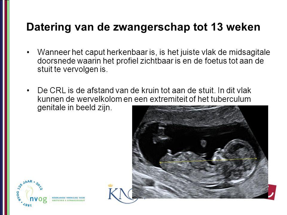 Datering van de zwangerschap tot 13 weken Wanneer het caput herkenbaar is, is het juiste vlak de midsagitale doorsnede waarin het profiel zichtbaar is