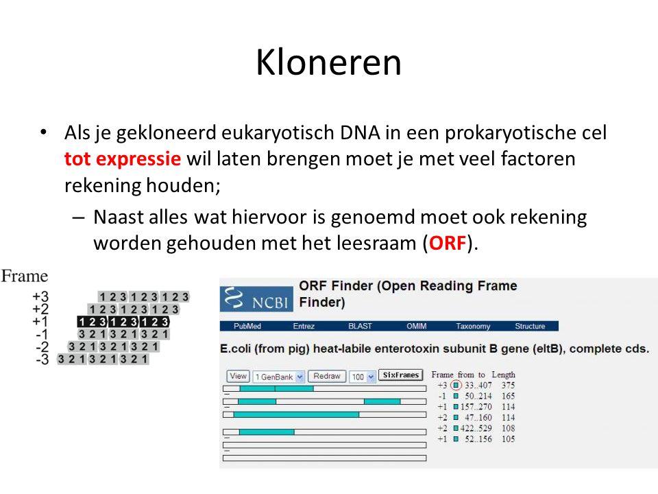 Kloneren Als je gekloneerd eukaryotisch DNA in een prokaryotische cel tot expressie wil laten brengen moet je met veel factoren rekening houden; – Naa