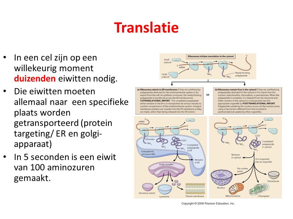 Translatie In een cel zijn op een willekeurig moment duizenden eiwitten nodig. Die eiwitten moeten allemaal naar een specifieke plaats worden getransp