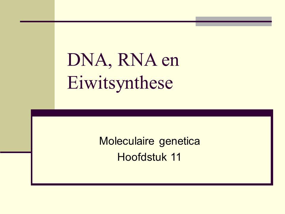 Basen sequenties en codering Adenine & Thymine (A tegenover T) Cytosine & Guanine (C tegenover G) Dus: Streng 1: GCCATAACGA Streng 2: CGGTATTGCT Dit noemen we de erfelijke code.