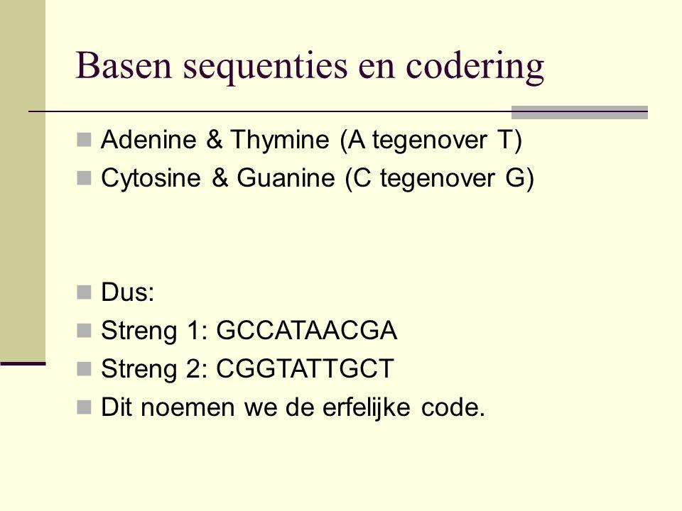 Basen sequenties en codering Adenine & Thymine (A tegenover T) Cytosine & Guanine (C tegenover G) Dus: Streng 1: GCCATAACGA Streng 2: CGGTATTGCT Dit n