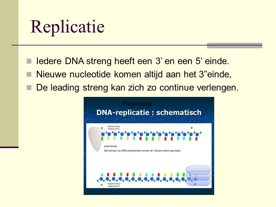"""Replicatie Iedere DNA streng heeft een 3' en een 5' einde. Nieuwe nucleotide komen altijd aan het 3""""einde, De leading streng kan zich zo continue verl"""