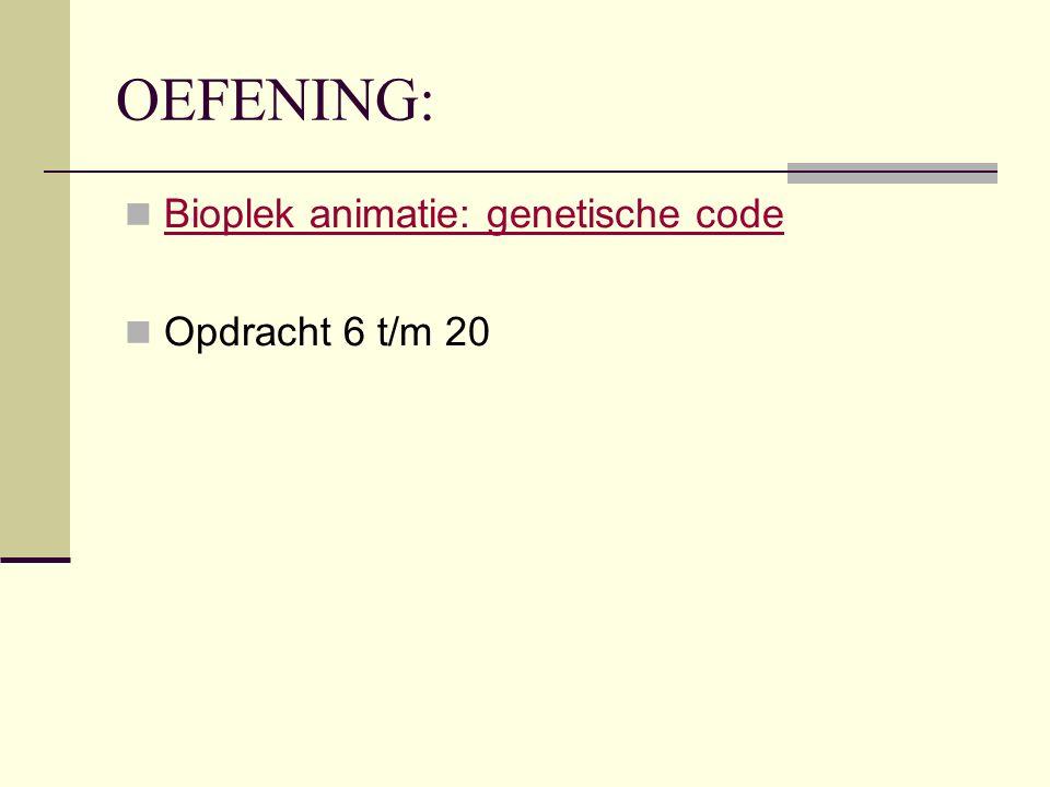 OEFENING: Bioplek animatie: genetische code Opdracht 6 t/m 20