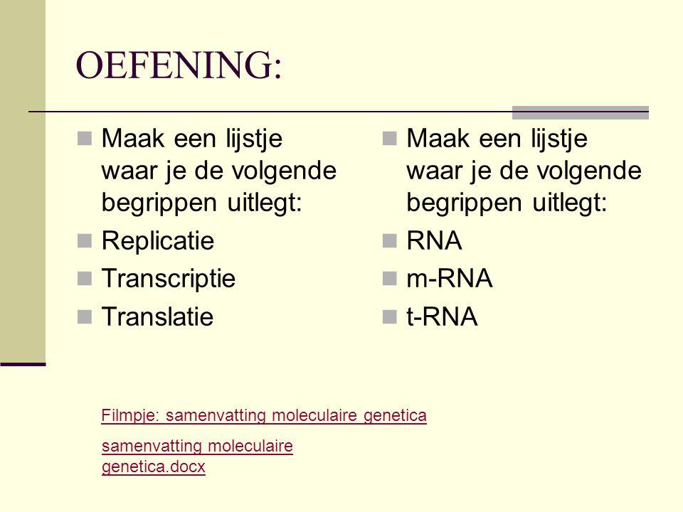 OEFENING: Maak een lijstje waar je de volgende begrippen uitlegt: Replicatie Transcriptie Translatie Maak een lijstje waar je de volgende begrippen ui