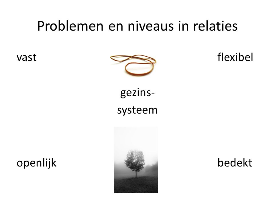 Problemen en niveaus in relaties vast flexibel gezins- systeem openlijk bedekt