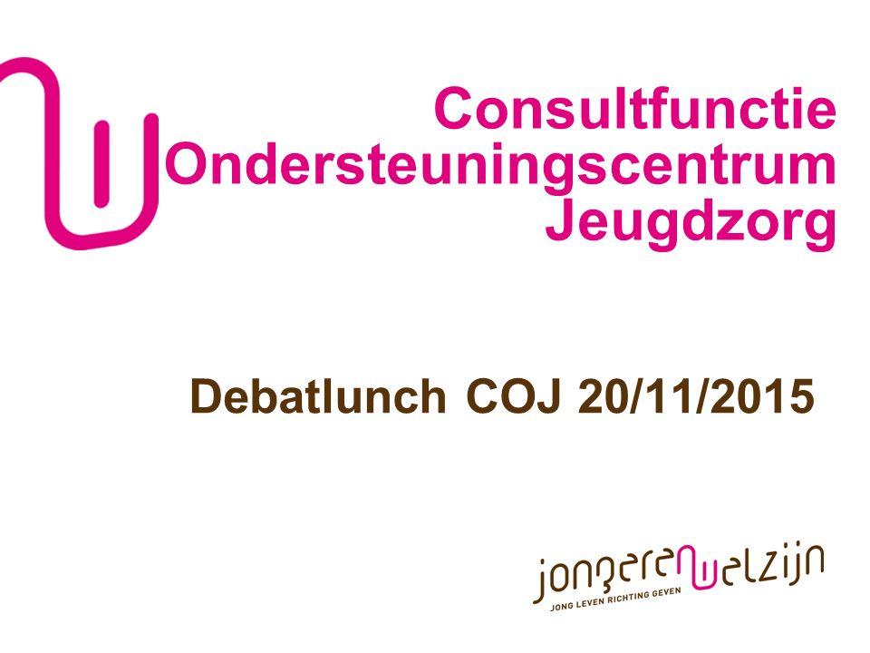 WWW.JONGERENWELZIJN.BE P 2 Consulting: een nieuwe praktijk in de jeugdhulp Situering in het Decreet IJH