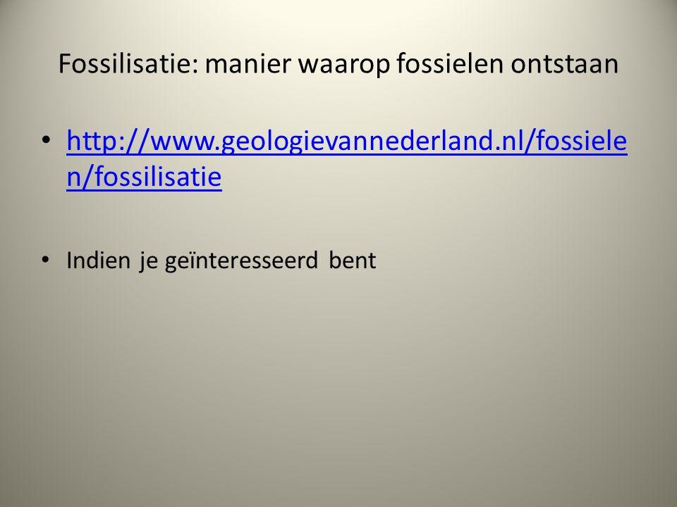 Fossilisatie: manier waarop fossielen ontstaan http://www.geologievannederland.nl/fossiele n/fossilisatie http://www.geologievannederland.nl/fossiele