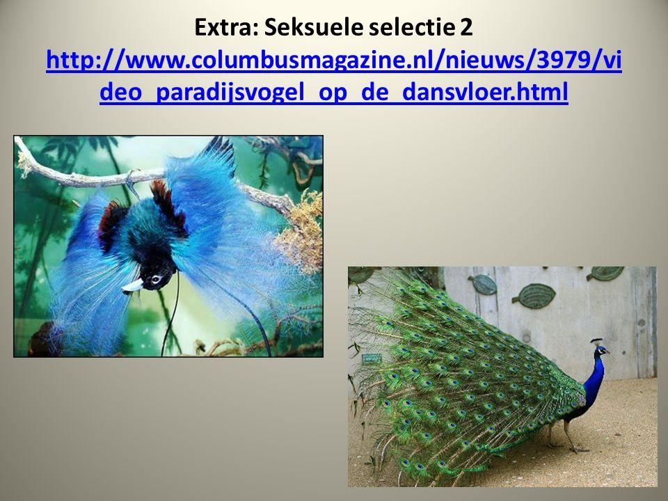 Extra: Seksuele selectie 2 http://www.columbusmagazine.nl/nieuws/3979/vi deo_paradijsvogel_op_de_dansvloer.html http://www.columbusmagazine.nl/nieuws/