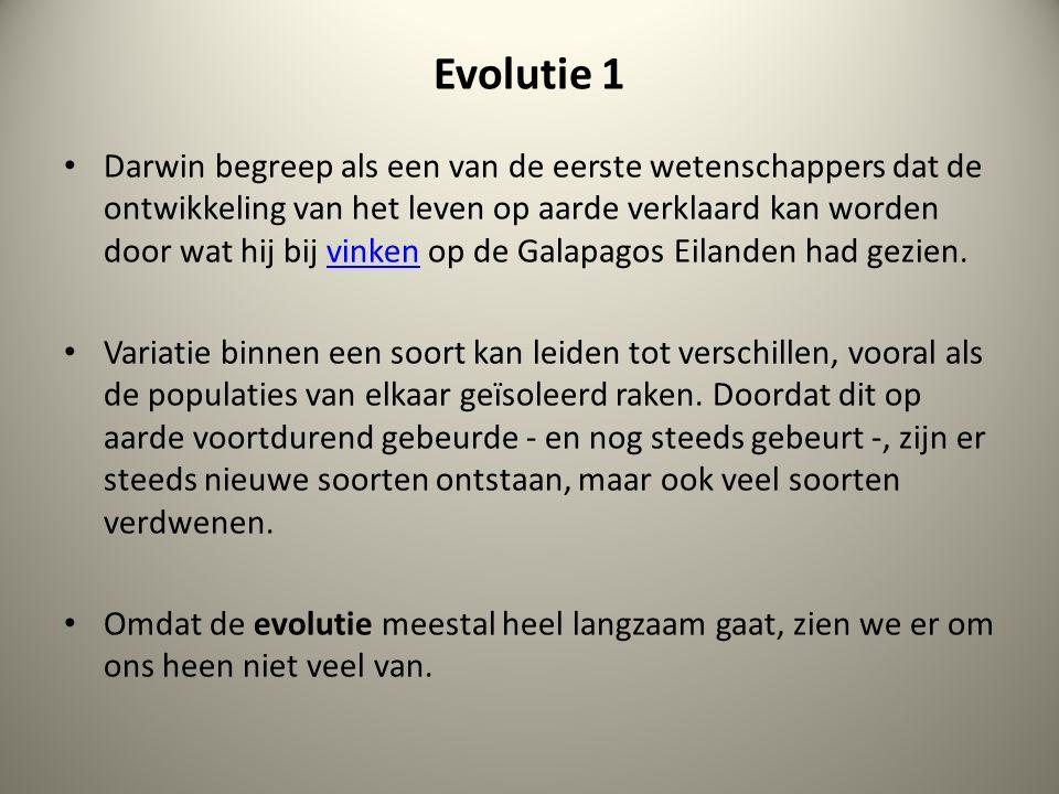 Evolutie 1 Darwin begreep als een van de eerste wetenschappers dat de ontwikkeling van het leven op aarde verklaard kan worden door wat hij bij vinken