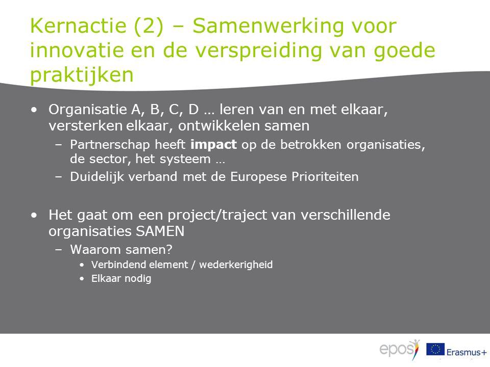 Kernactie (2) – Samenwerking voor innovatie en de verspreiding van goede praktijken Organisatie A, B, C, D … leren van en met elkaar, versterken elkaar, ontwikkelen samen –Partnerschap heeft impact op de betrokken organisaties, de sector, het systeem … –Duidelijk verband met de Europese Prioriteiten Het gaat om een project/traject van verschillende organisaties SAMEN –Waarom samen.