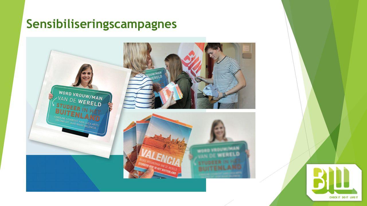 Sensibiliseringscampagnes - online