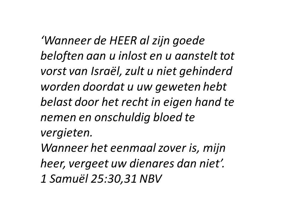 'Wanneer de HEER al zijn goede beloften aan u inlost en u aanstelt tot vorst van Israël, zult u niet gehinderd worden doordat u uw geweten hebt belast door het recht in eigen hand te nemen en onschuldig bloed te vergieten.