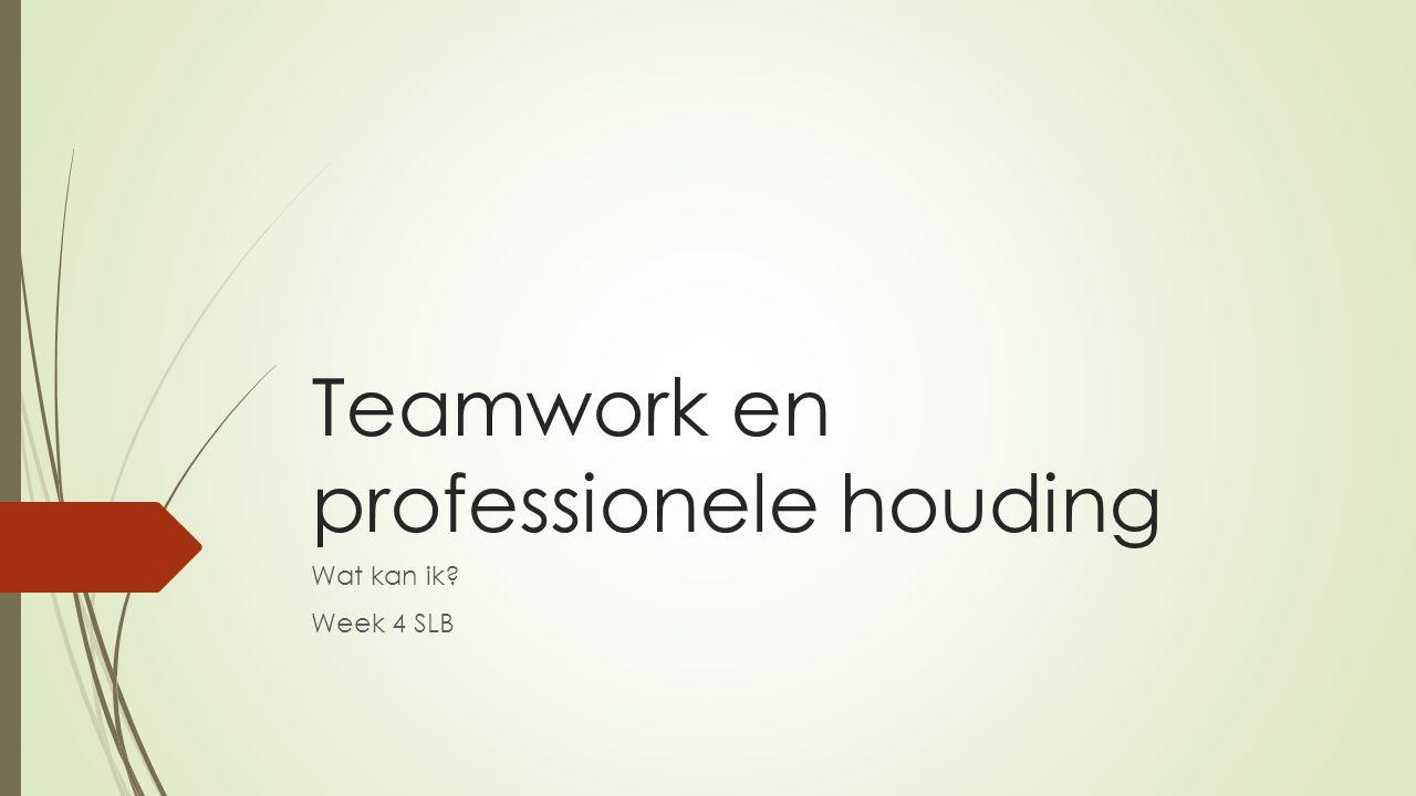 Teamwork en professionele houding Wat kan ik? Week 4 SLB