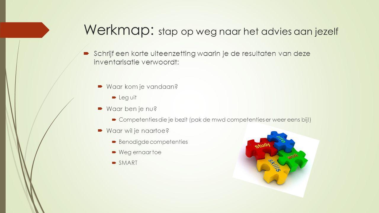 Werkmap: stap op weg naar het advies aan jezelf  Schrijf een korte uiteenzetting waarin je de resultaten van deze inventarisatie verwoordt:  Waar ko
