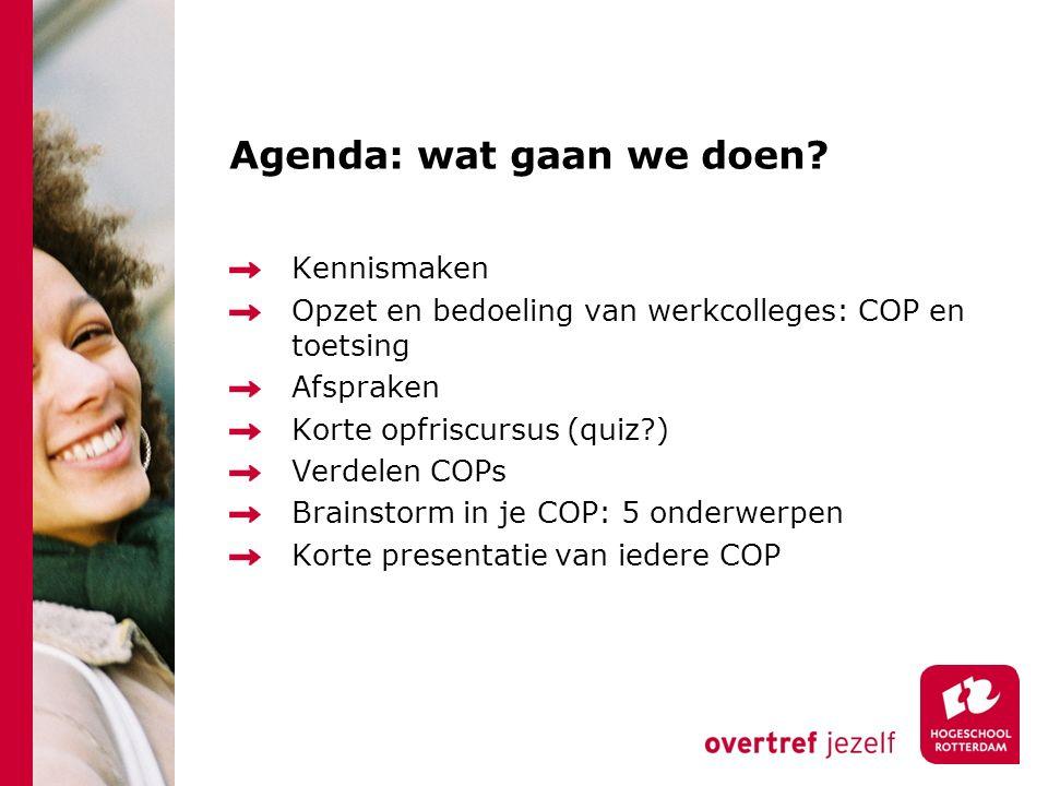 Agenda: wat gaan we doen.