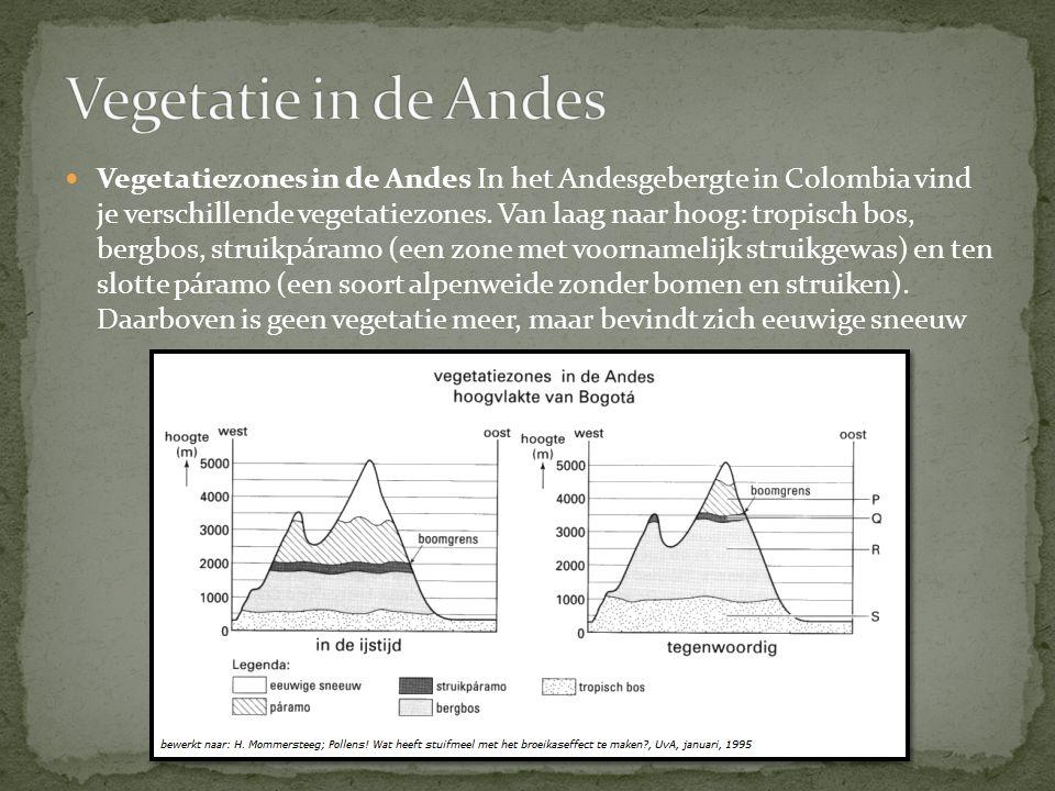 Vegetatiezones in de Andes In het Andesgebergte in Colombia vind je verschillende vegetatiezones. Van laag naar hoog: tropisch bos, bergbos, struikpár